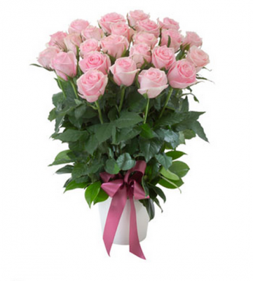 Gift flowers bilbao luxury roses in ceramic pot in bilbao negle Image collections