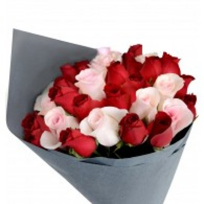 pink___red_roses_bouquet_1_1